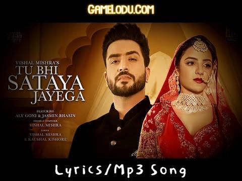 Tune Bada Sataya Hai Mujhe Ja Tu Bhi Sataya Jayega Mp3 Song